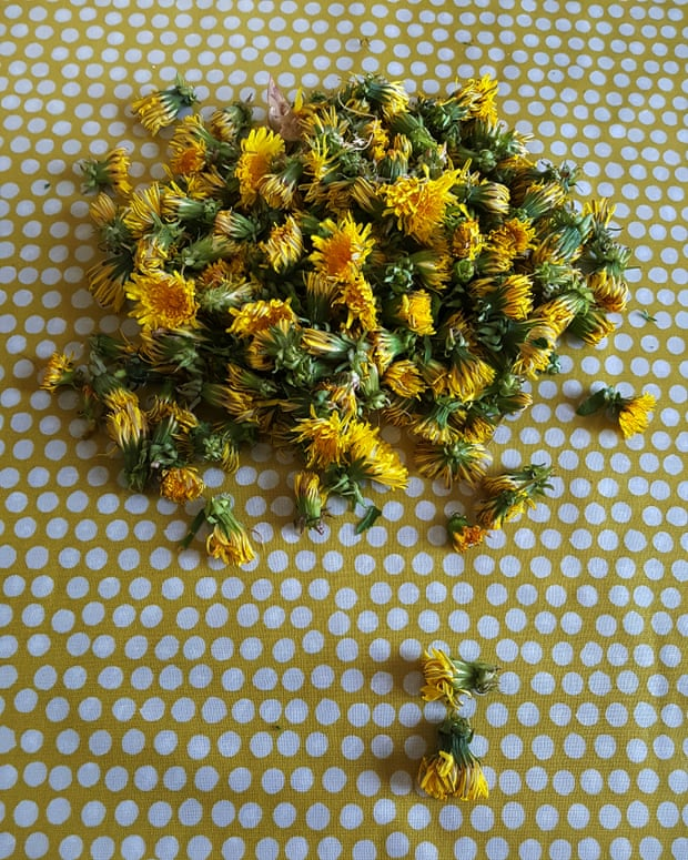 Dandelion honey. Photograph: Vanessa Winship